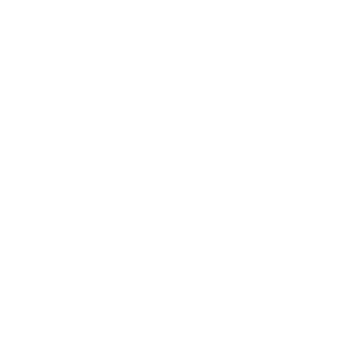 National Gallery Logo White